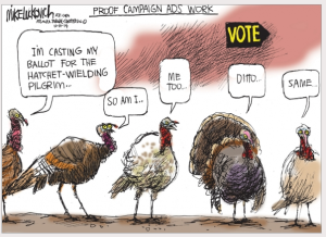 Turkey voters